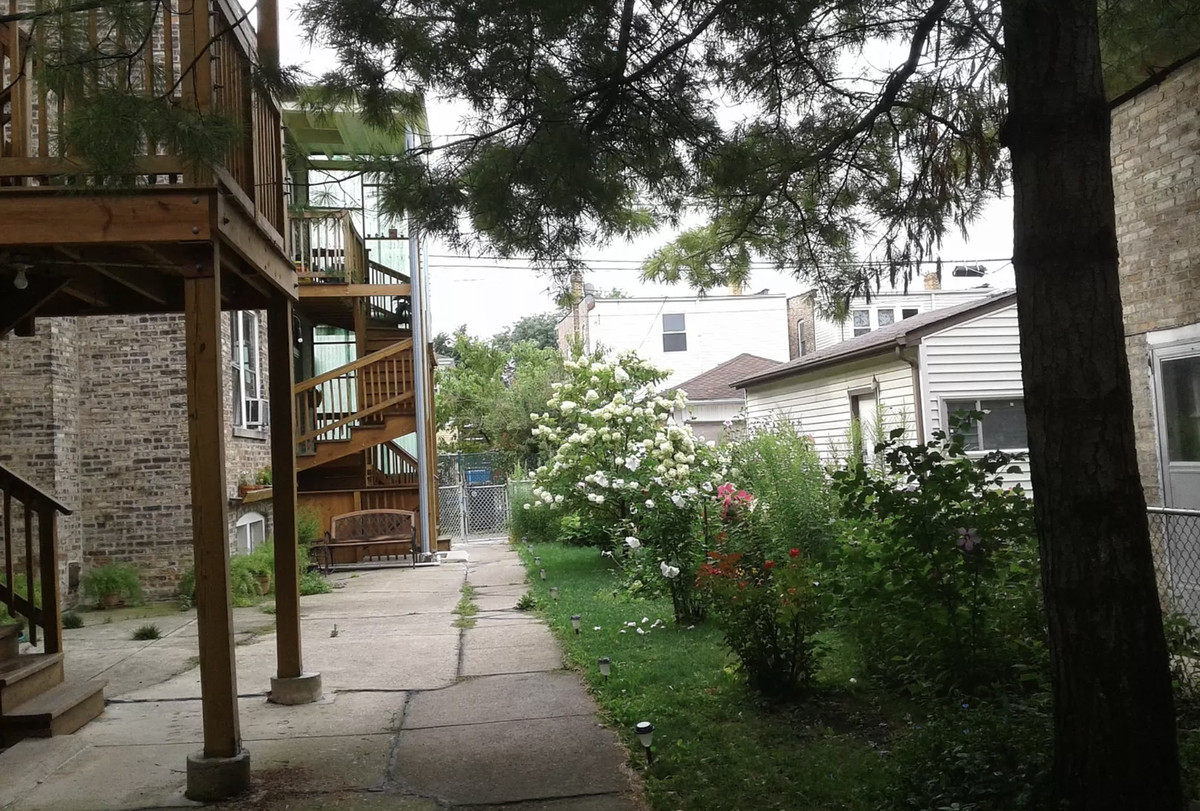 A backyard of an apartment building with tall trees, grass, and flowers.
