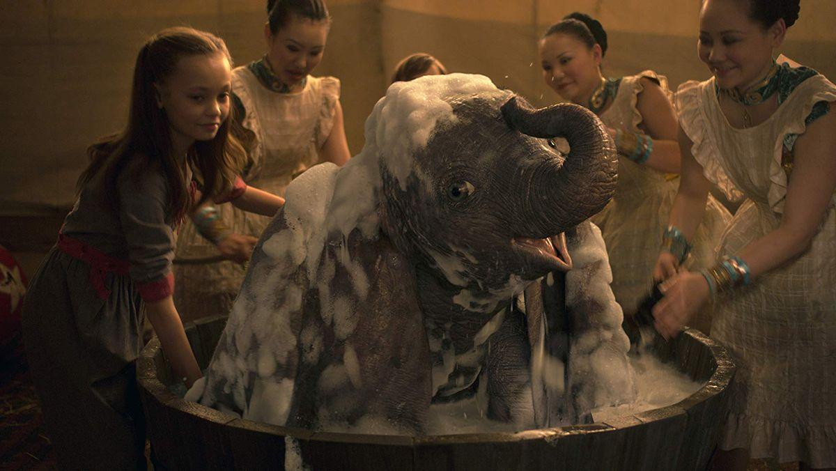 Dumbo is very cute.