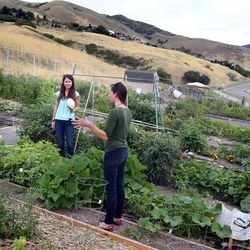 Lisa Boone, left, and Maryann Munson chat after the dedication of the Popperton Plots community garden in Salt Lake City on Friday, Aug. 22, 2014.