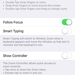 """To magnify portions of the display, enable the """"Zoom"""" feature."""