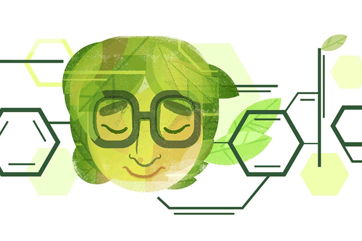 Google celebrates 100th birthday of chemist Asima Chatterjee