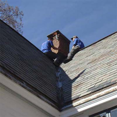 Bat Removal Specialists Examining Roof