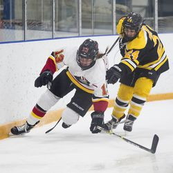 Calgary Inferno forward Kelty Apperson and Boston Blades defender Kristina Brown battle for the puck.