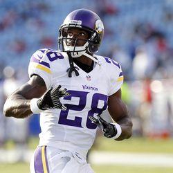 Aug 16, 2013; Orchard Park, NY, USA; Minnesota Vikings running back Adrian Peterson (28) before the game against the Buffalo Bills at Ralph Wilson Stadium. Bills beat the Vikings 20-16.