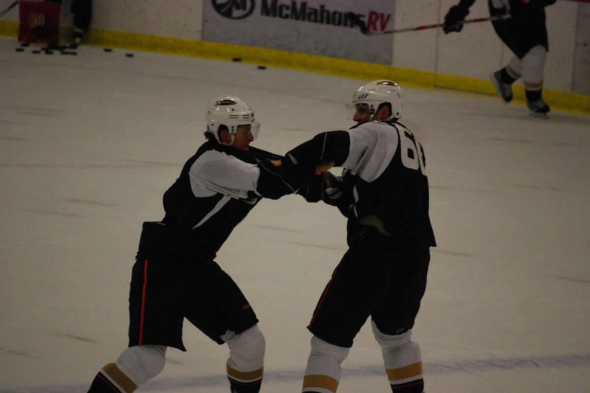 Sbisa and Mikkelson fighting at last year's training camp.  Photo courtesy of CK.