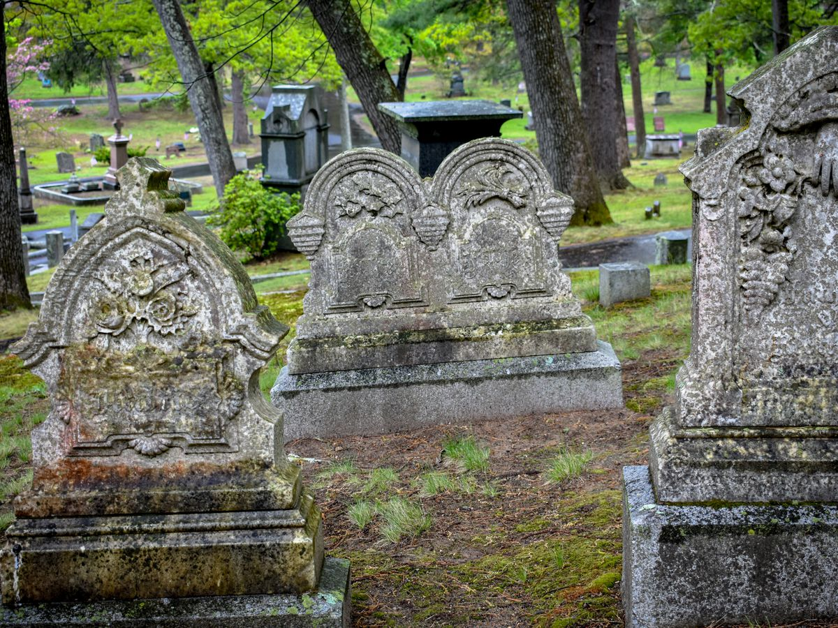 Old headstones with moss growing on them.