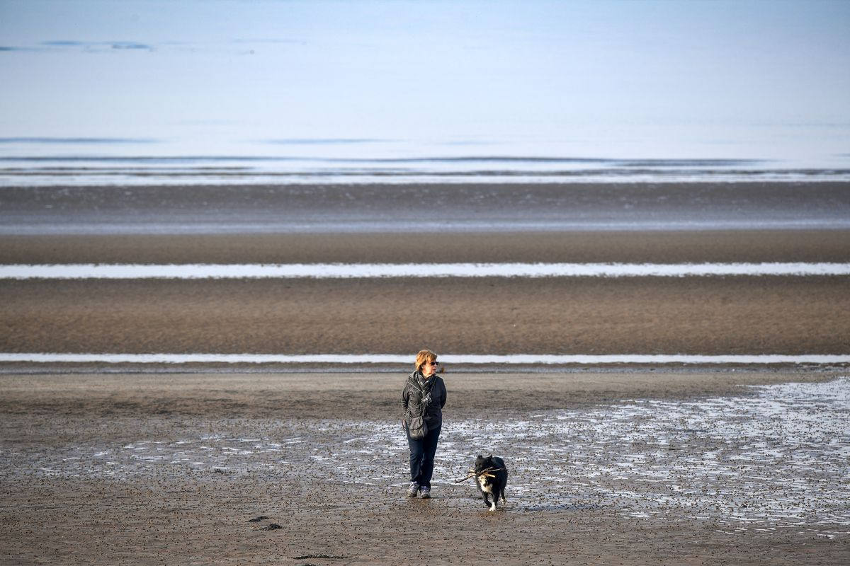 Warm Winter Temperatures Persist In Scotland