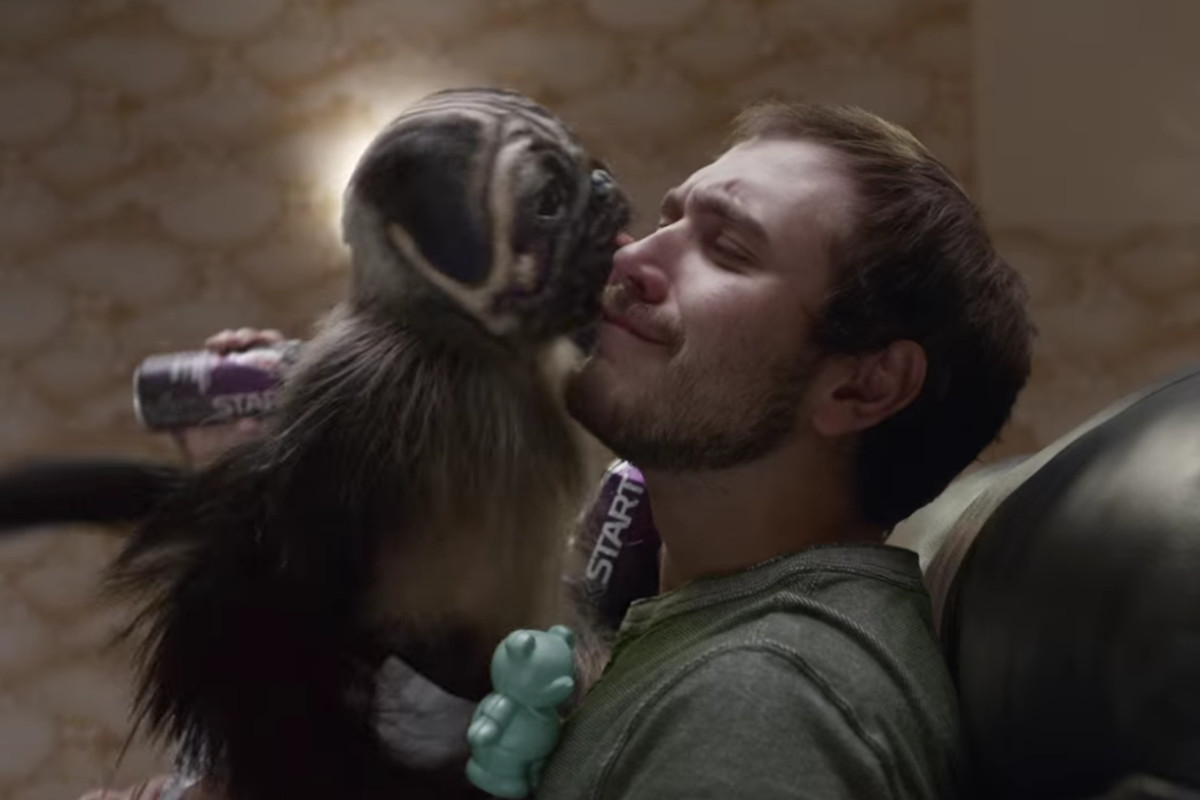 Best 2020 Super Bowl Commercials Super Bowl commercials 2016: the 9 best and 5 worst ads   Vox