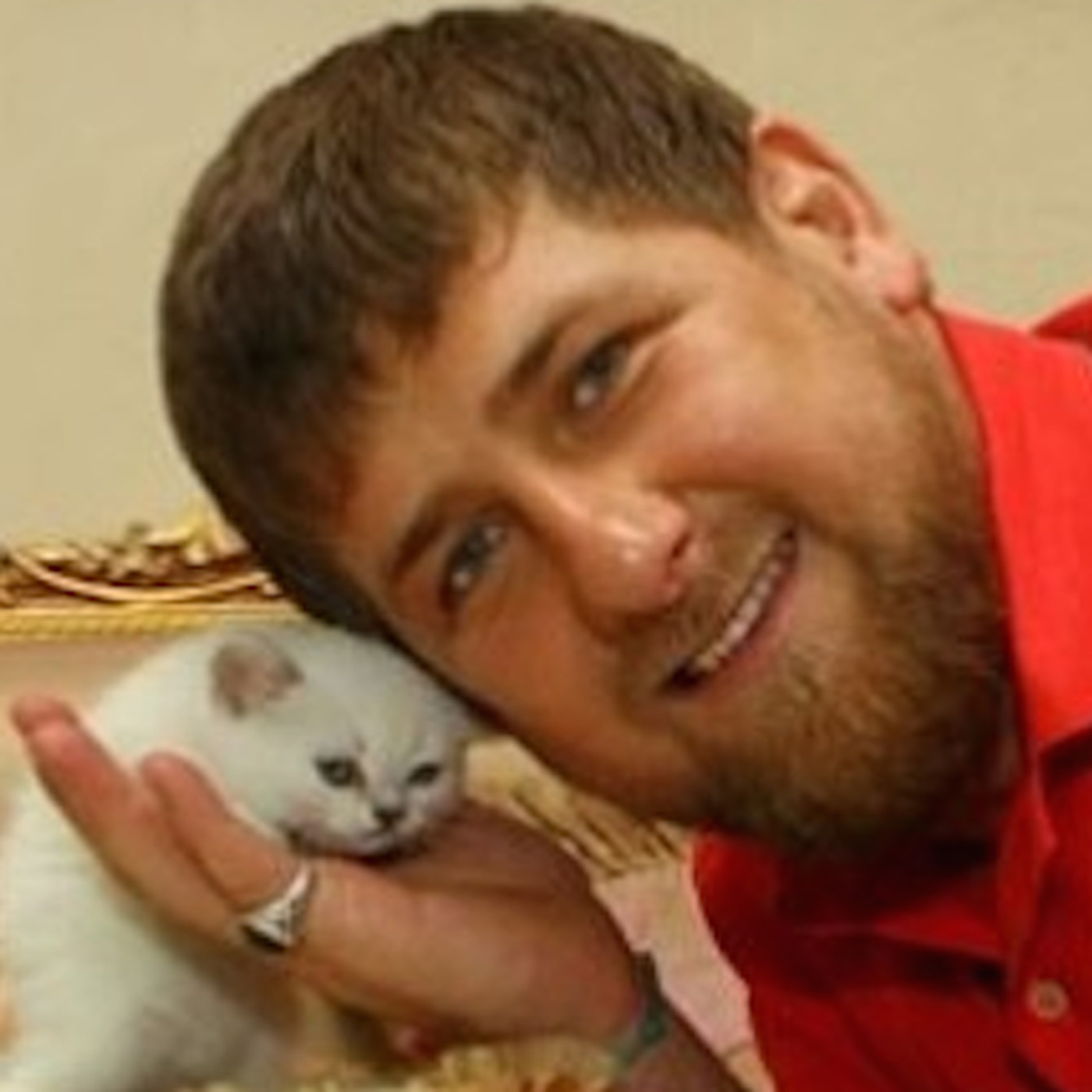 Chechnya S Kitten Hugging Putin Loving Dictator Explained In 19 Bizarre Instagrams Vox