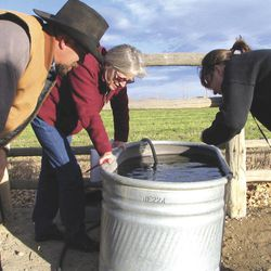 FILE - In a  Nov. 8, 2007 file photo, John Fenton and others examine neighbor Louis Meeks' water in Pavillion, Wyo., where federal officials indicated people shouldn't drink water from 40 wells in and around this central Wyoming farming and ranching community. The U.S. Geological Survey plans to release results Wednesday, Sept. 26, 2012 of the latest testing in the Pavillion area, where some homeowners and the EPA suspect hydraulic fracking has tainted the groundwater.