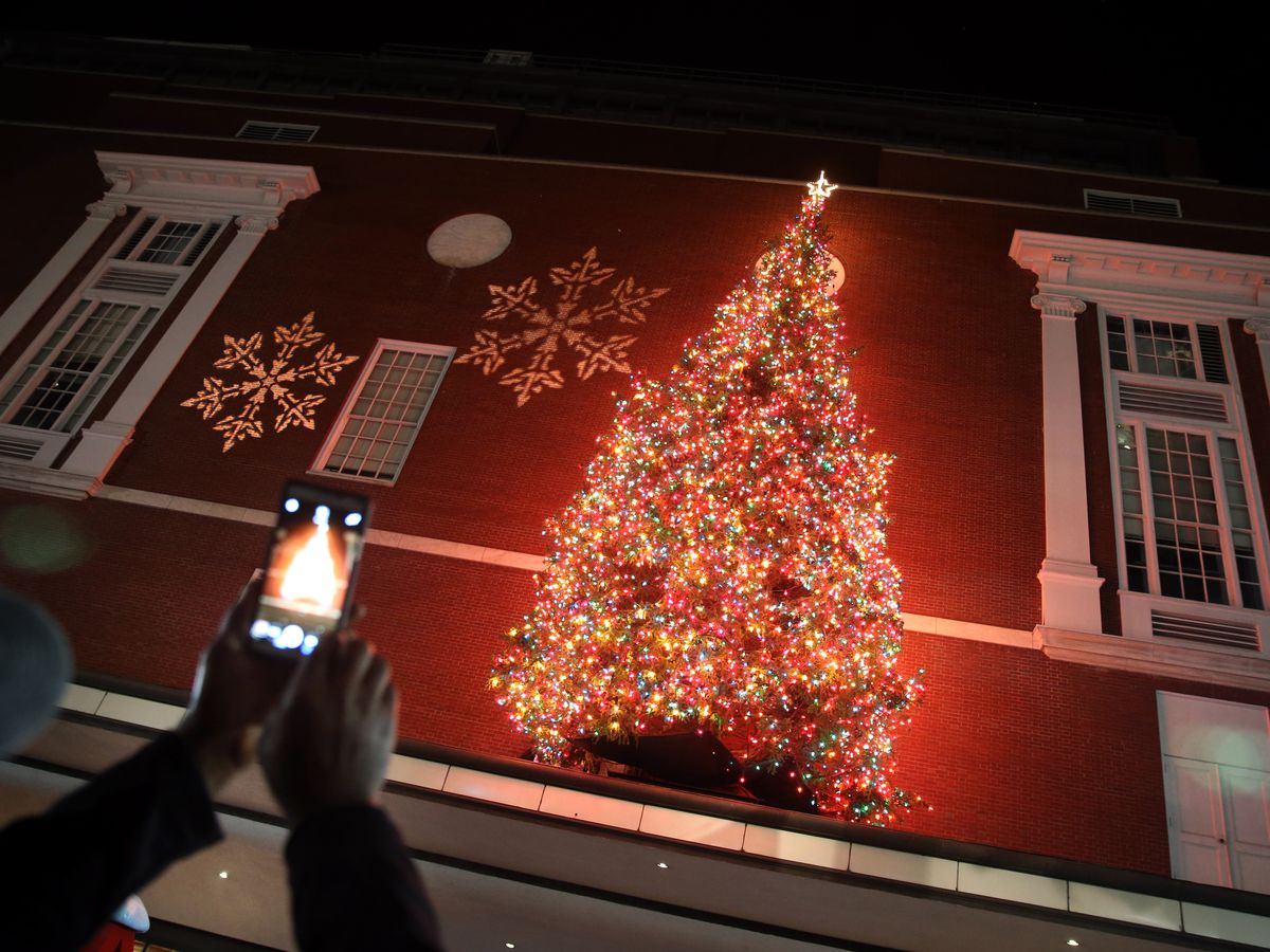 A lighted-up Christmas tree mounted on the side of a building, and people are taking pictures of the tree.