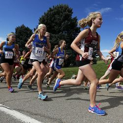 3A cross country race featured first-time champions, repeat