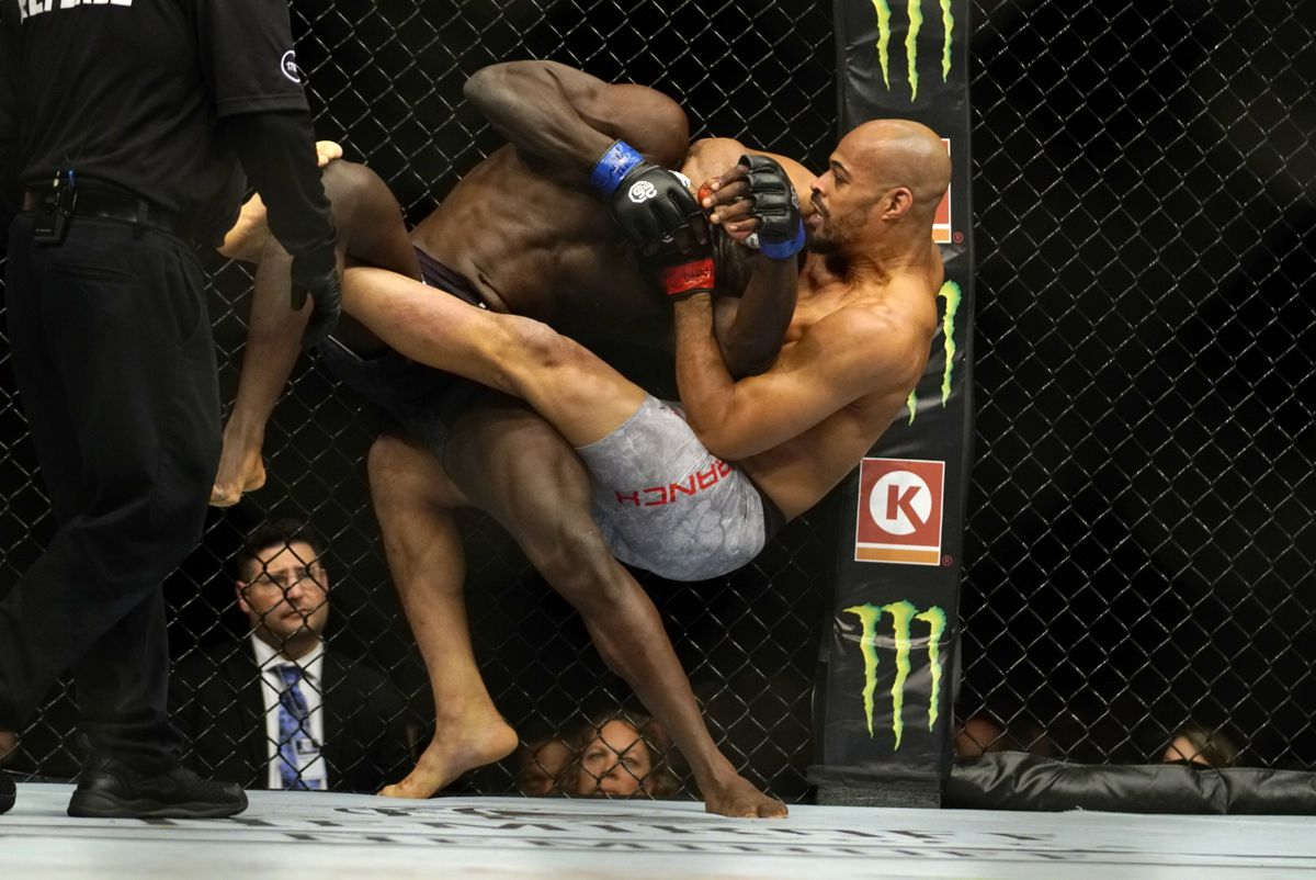 Ultimate Fighting Championship 230