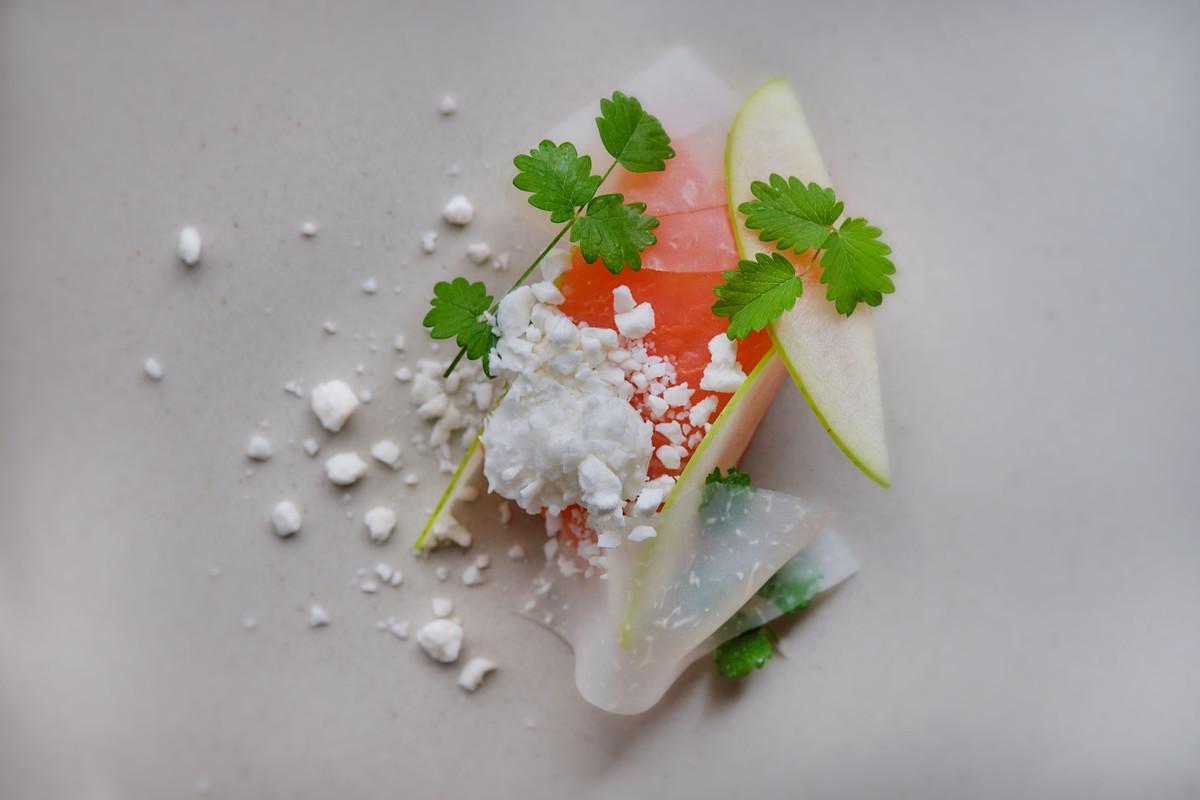 Sea trout with goat's yoghurt, horseradish, apple, and salad burnet, the goat's yoghurt frozen