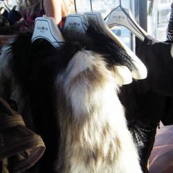 Furry jacket, $149; furry vest, $99