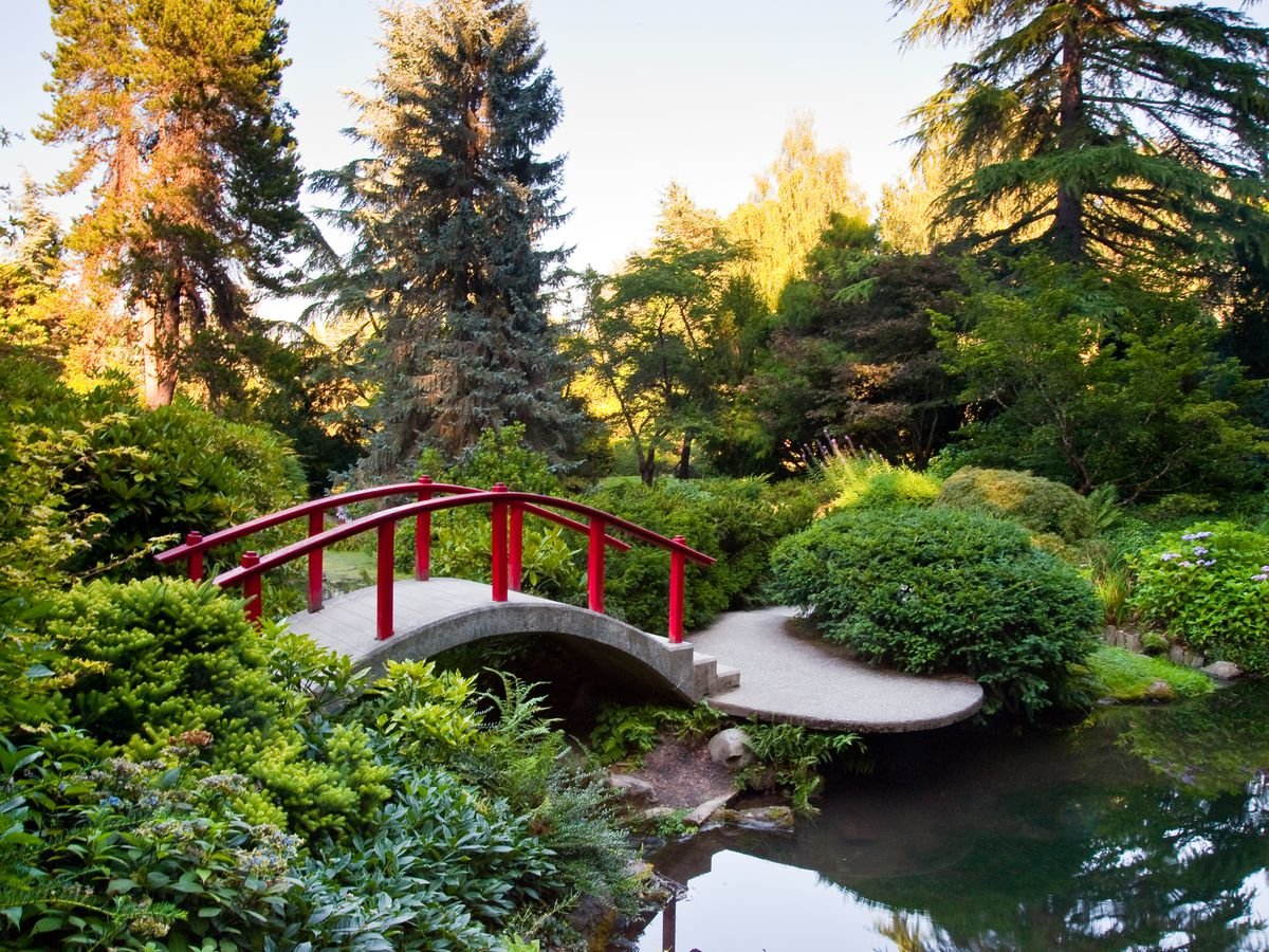 16 Breathtaking Seattle Area Botanical Gardens Curbed Seattle