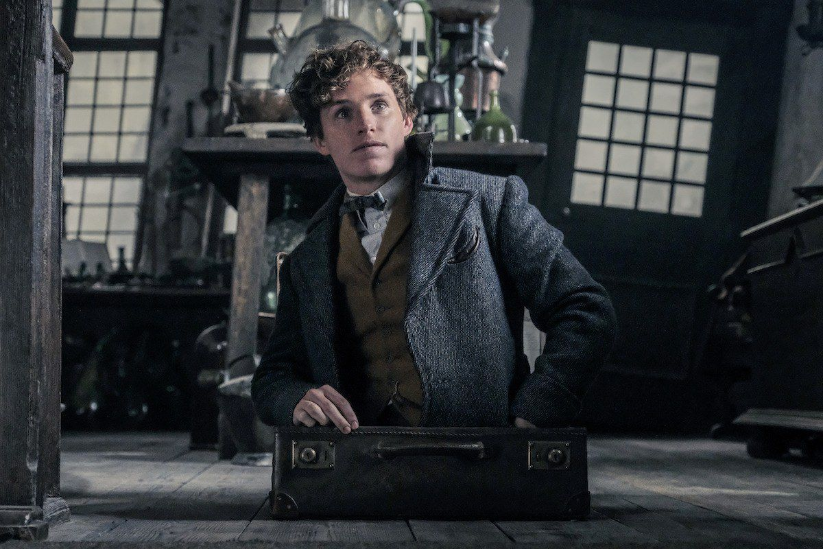 A young man in 'Fantastic Beasts: THe Crimes of Grindelwald'