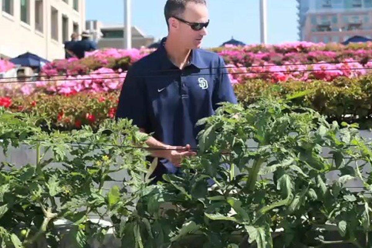 Luke Yoder tends the Padres Bullpen Garden