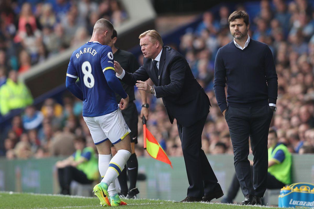 Everton v Tottenham Hotspur - Premier League