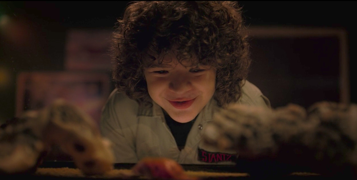 Stranger Things season 2 episode 3 recap - Polygon