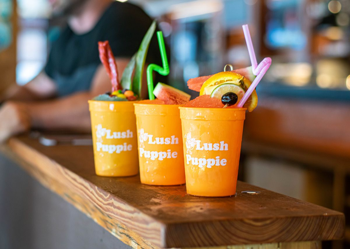 """Three frozen cocktails in """"lush puppie"""" plastic cups, garnished with fruit and bendy straws, sit on a wooden bar"""