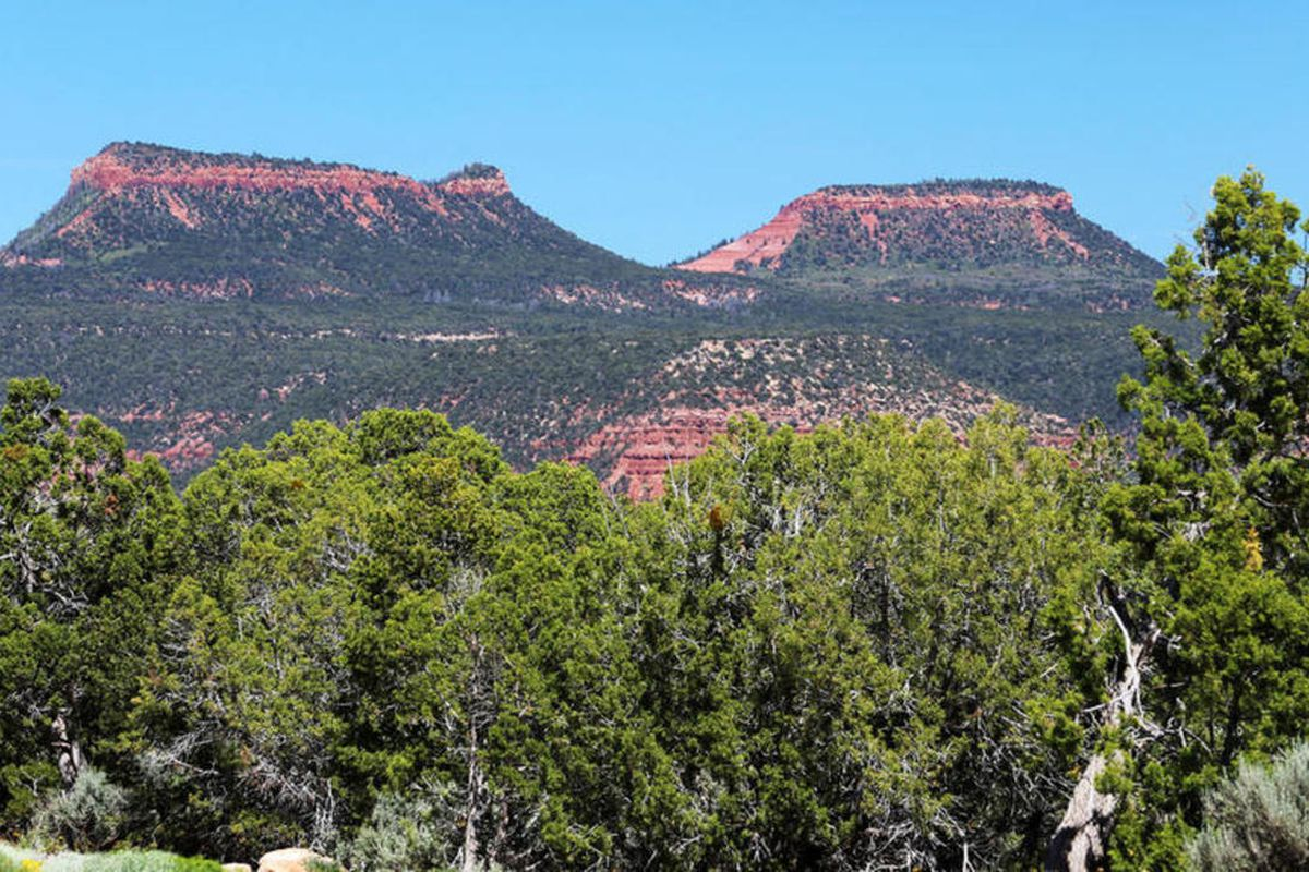 """FILE — The Bears Ears area Thursday, June 2, 2016. The Bears Ears National Monument proposal offers a holistic, culturally informed and economically sustainable plan for managing San Juan County""""™s public lands."""