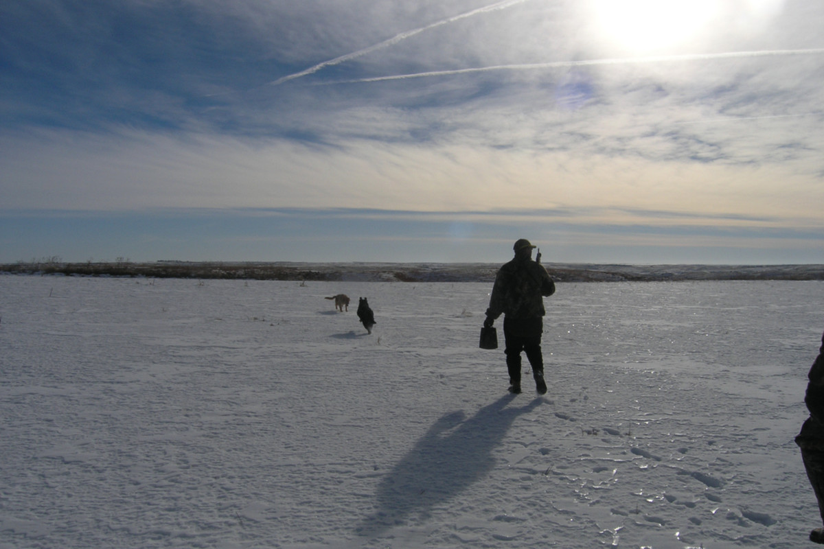 Nebraska Landscape Hunter
