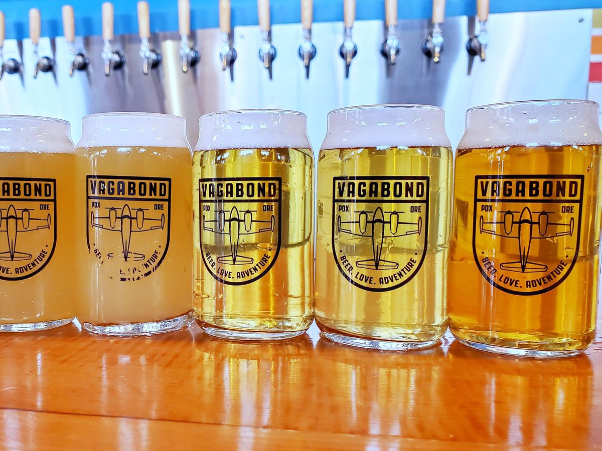 A row of 6 small glasses of beer is shown on the bar
