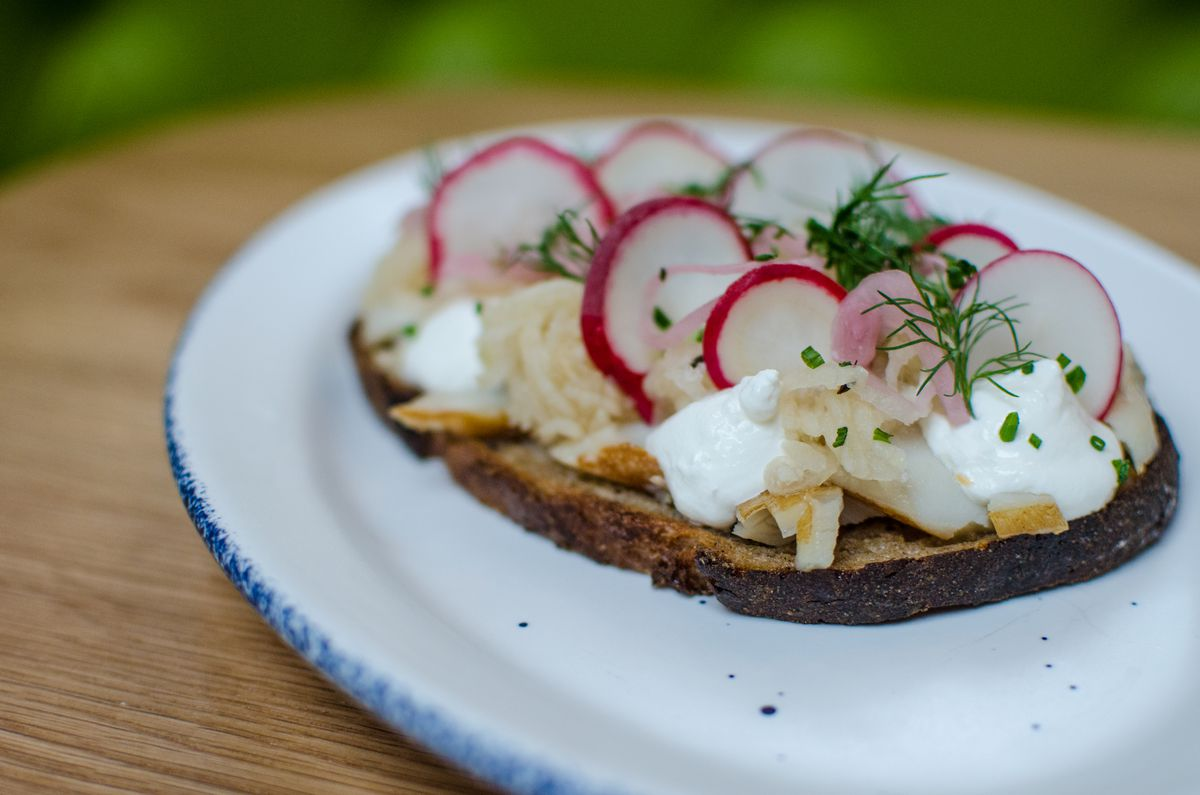 A thin piece of toast sits on a white plate with a blue rim, which is on a wooden table in front of a light green background. The toast is spread with cream cheese, fish, herbs, and sliced radishes.