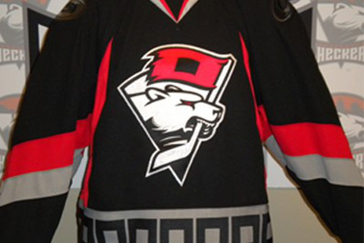 """The design of the Charlotte Checkers' newly designed <strong>Third Jersey</strong> was unveiled Friday night. """"The new secondary logo combines signature characteristics of each team's branding, including the bear mascot and hurricane warning flag."""""""