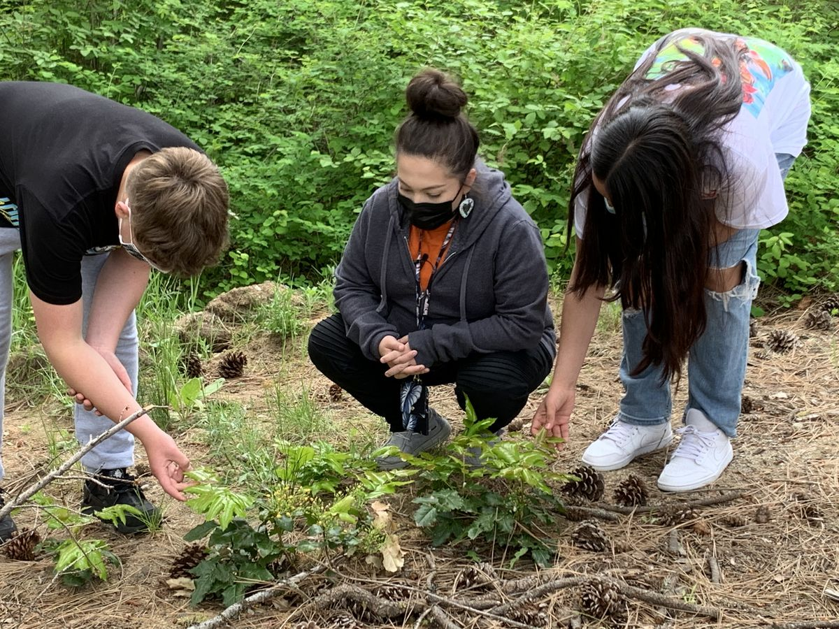 Students learn about plants and foods that have historically been important to the Spokane Tribe of Indians.