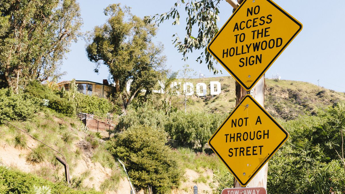 Seize the Hollywood Sign - Curbed LA