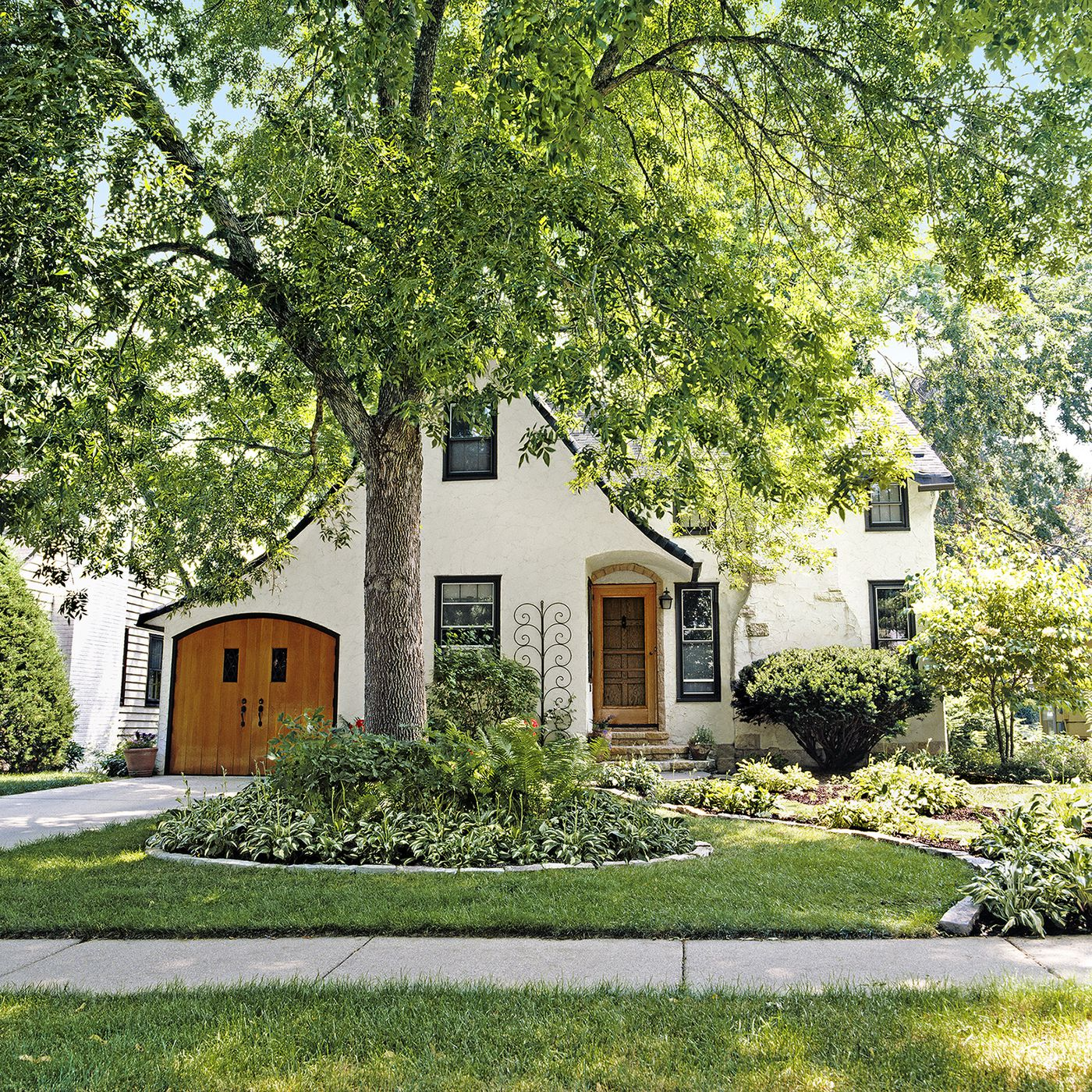 All About Shade Trees This Old House