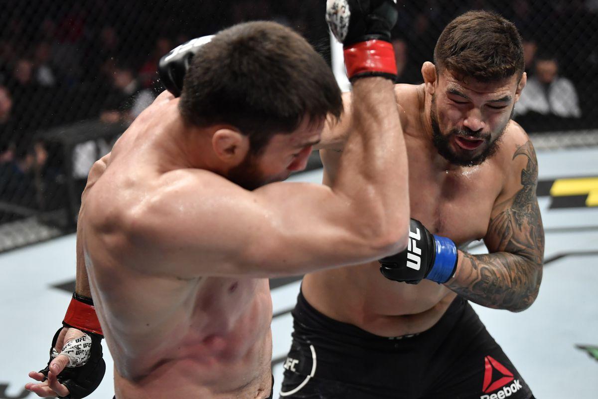 UFC Fight Night: Gamzatov v Abreu