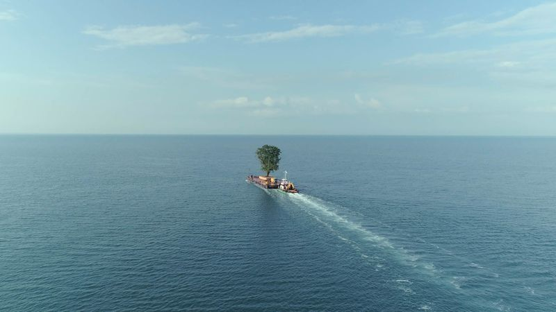 A tree sits by itself on a barge in the middle of a vast body of water.