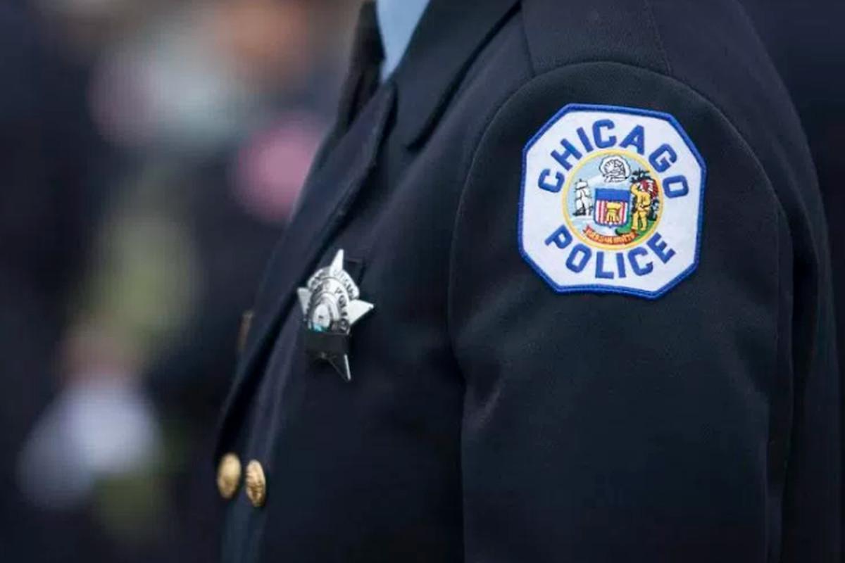Parked vehicles stolen in Little Village: police