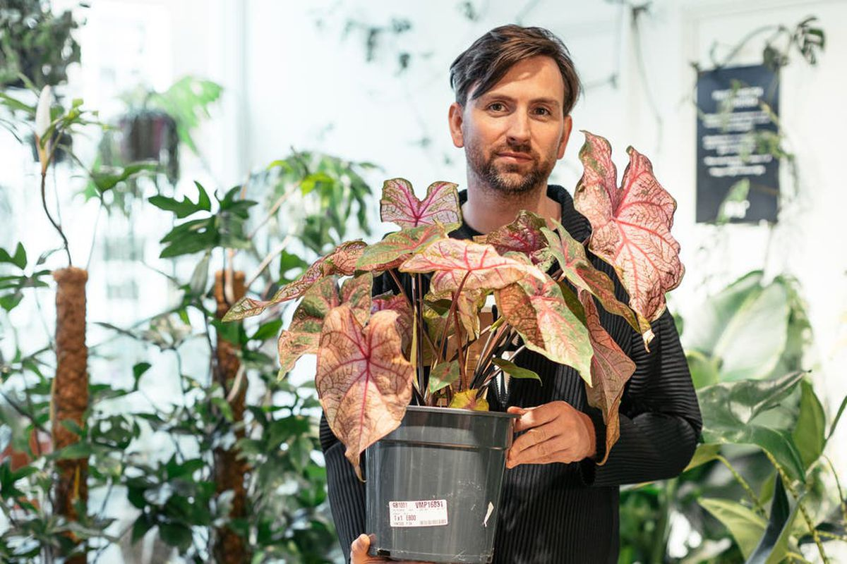 Stevie Parle with plants ahead of his relocating Joy from Portobello Dock to Marylebone village