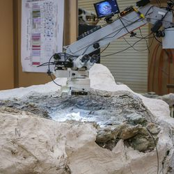 A microscope illuminates a section of a juvenile raptor jawbone fossil at Thanksgiving Point in Lehi on Thursday, Aug. 31, 2017. The 9-ton chunk of rock may contain the fossils of as many as six different animals and may take as long as 10 years to fully excavate.