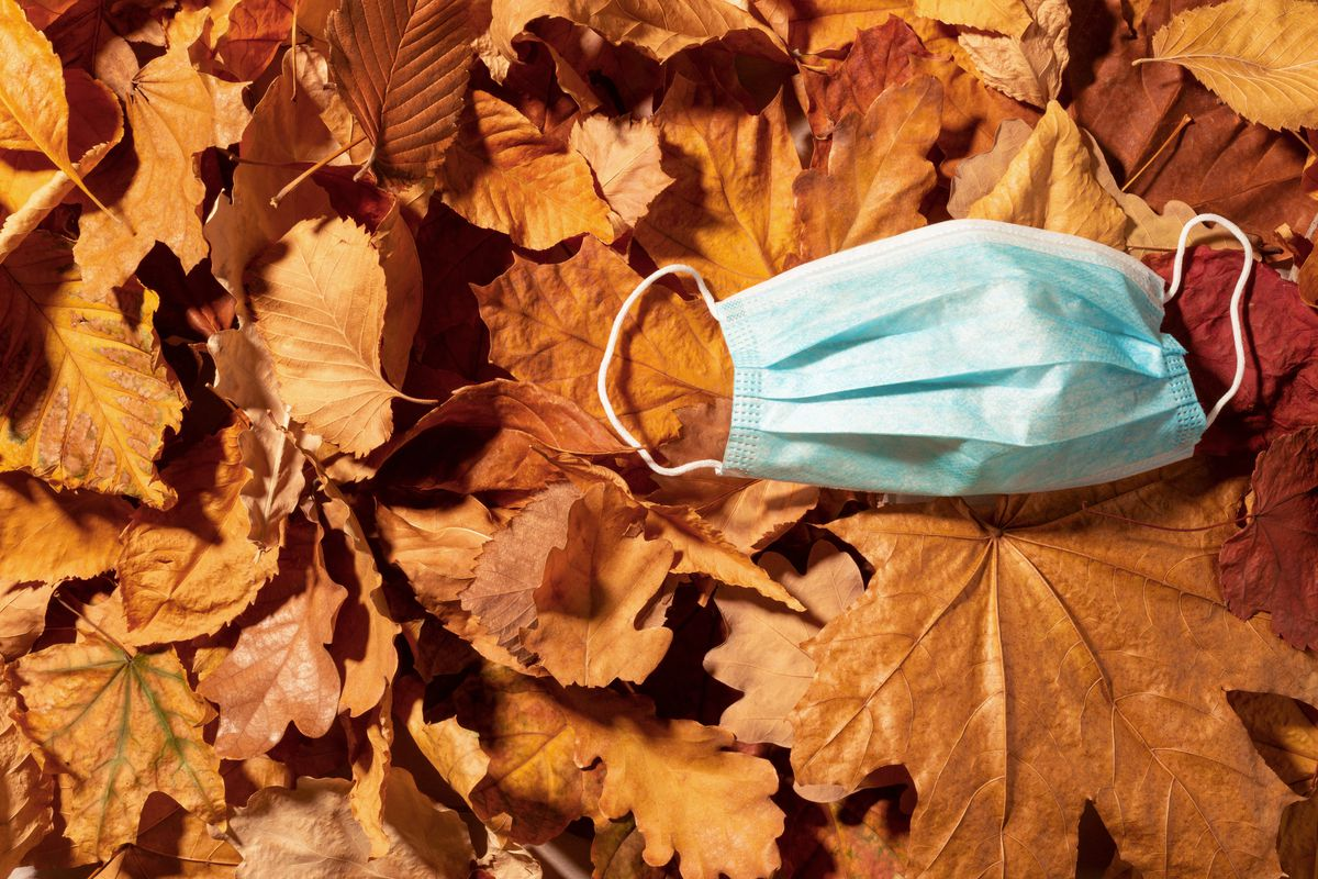 A light blue surgical mask on top of a layer of dry, orange tree leaves