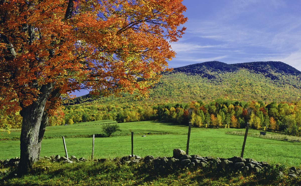 New England fall foliage: Best areas to watch the leaves change ...