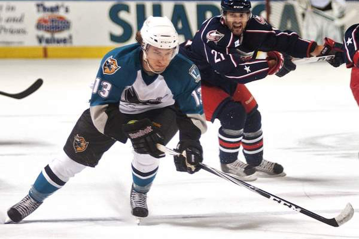 Worcester Sharks energizing rookie Curt Gogol in action against the Springfield Falcons at the DCU Center on Dec. 2, 2011.  <strong>Photo courtesy of Steve Lanava of www.telegram.com</strong>