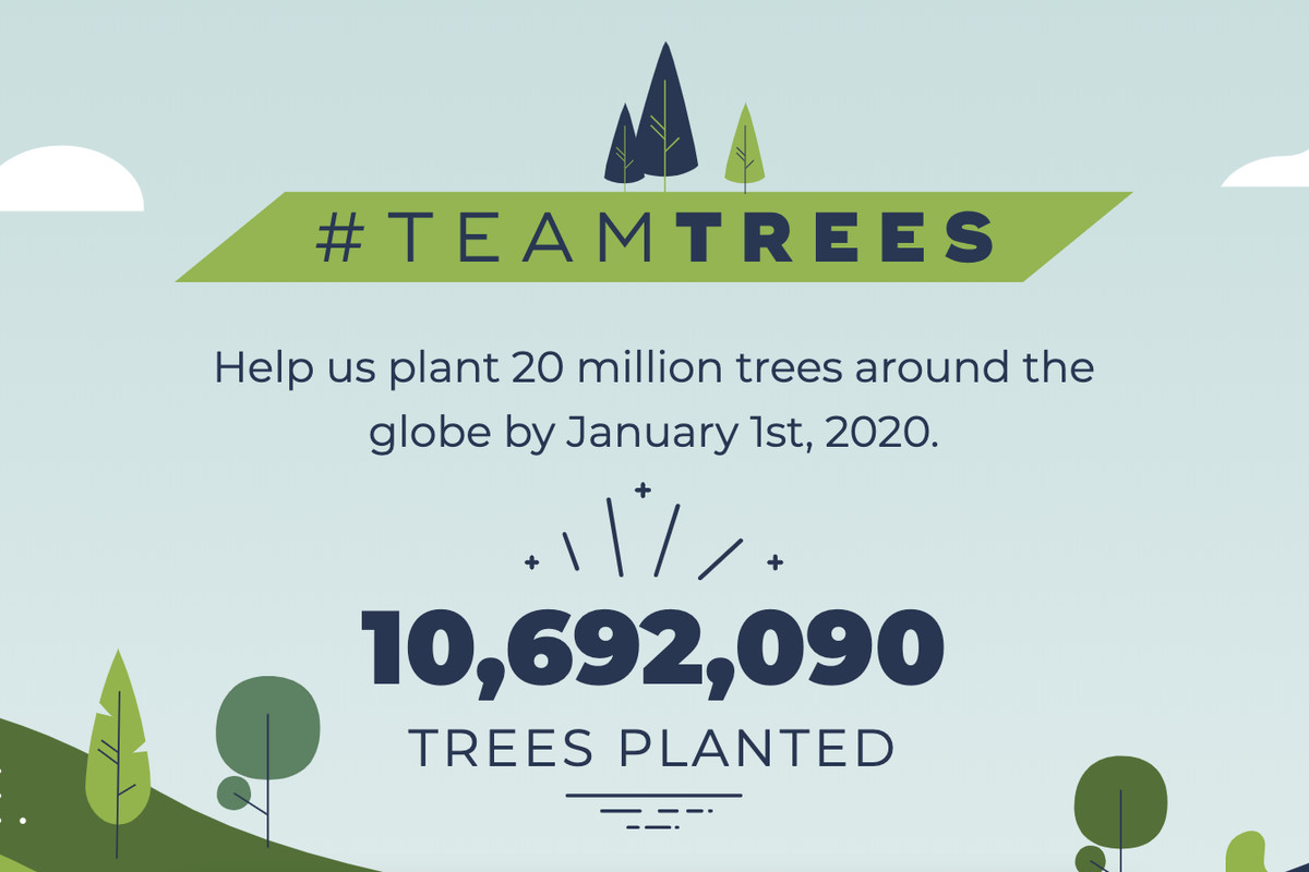 Best Charities To Donate To 2020.Youtubers Raise 10 Million For Tree Charity And Bring In