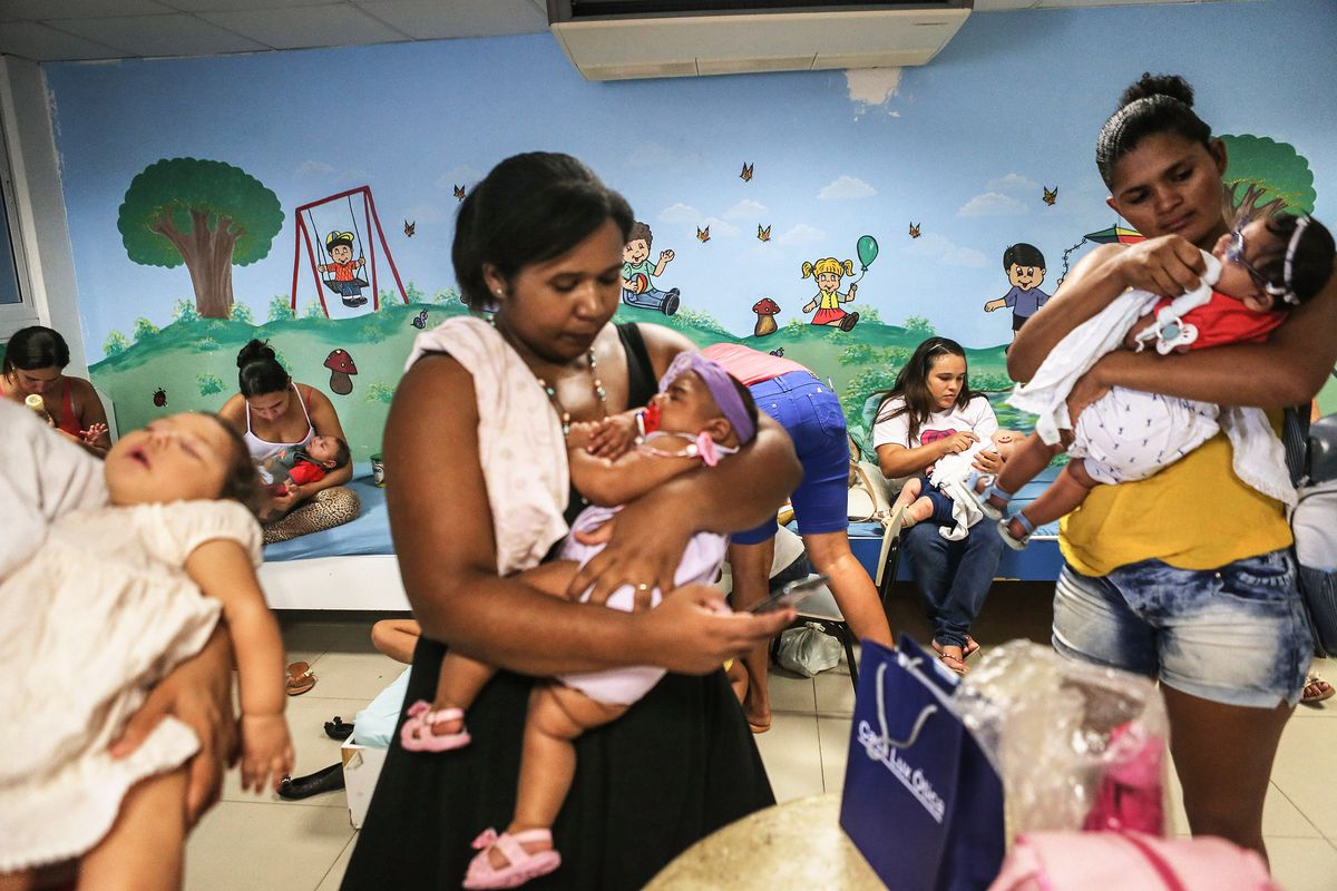Brazil Continues Battle Against Zika Virus Ahead Of Olympic Games