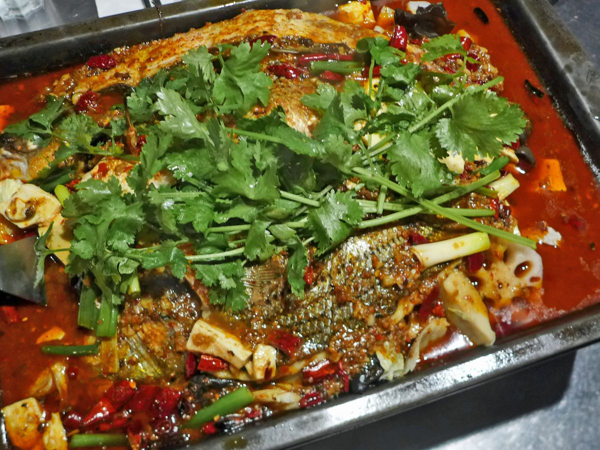 A skin-on fish divided into two parts and immersed in chile oil, heaped with cilantro.