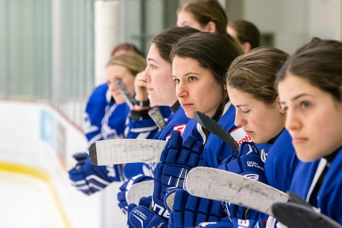 Toronto Furies on the bench