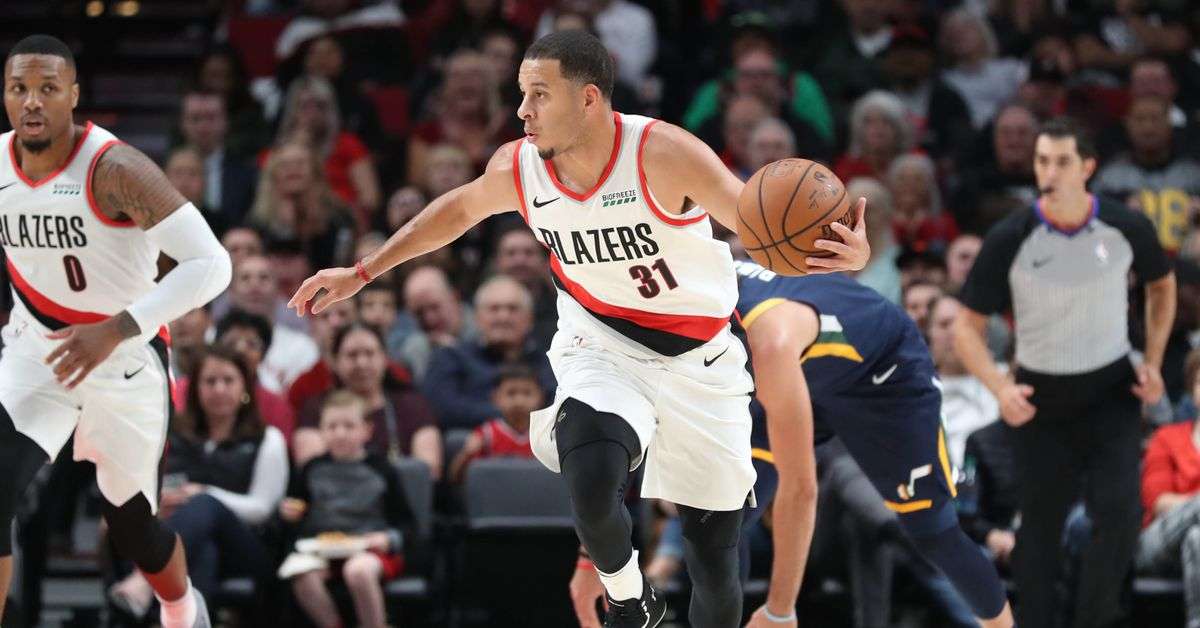 Have the Blazers Improved the Backup Point Guard Spot? Curry vs Napier