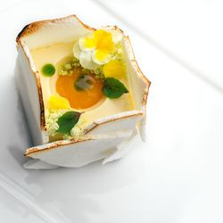 Key Lime Cube with passion fruit, toasted merengue, African basil