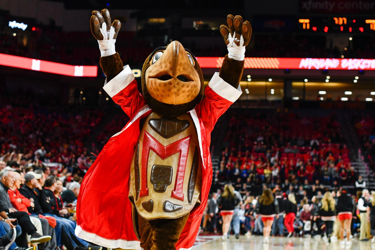 Testudo, holiday outfit