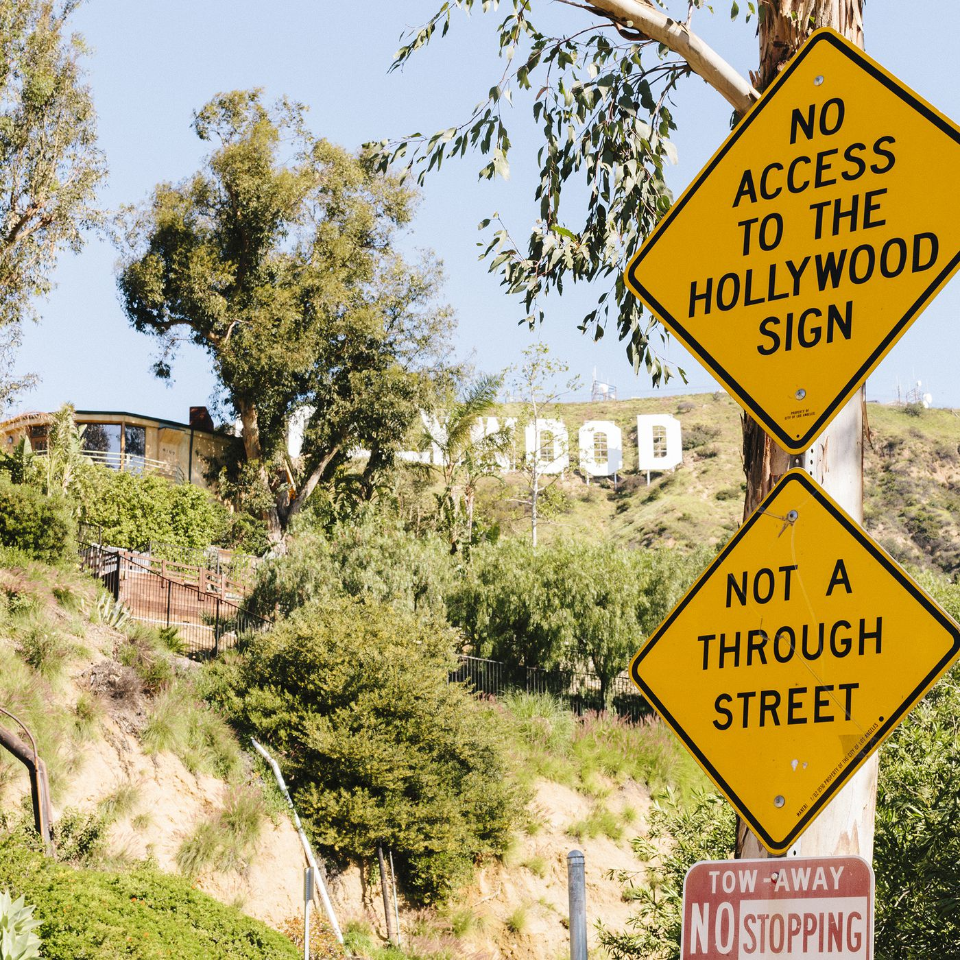 Seize the hollywood sign curbed la biocorpaavc Choice Image