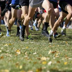 The mass start takes off during the 4A Boys State Cross-Country Championships at Sugar House Park in Salt Lake City on Wednesday, Oct. 23, 2019.
